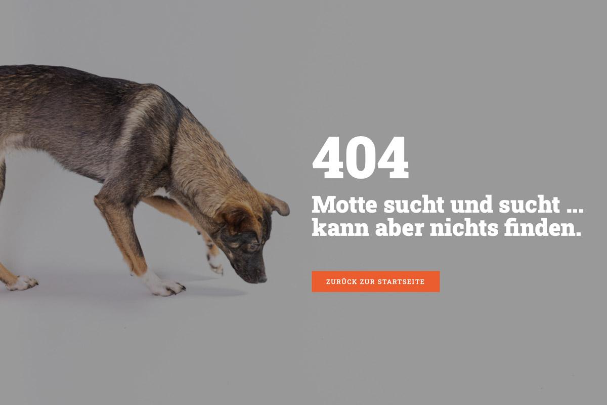 kreative 404 Seiten - Motte sucht etwas